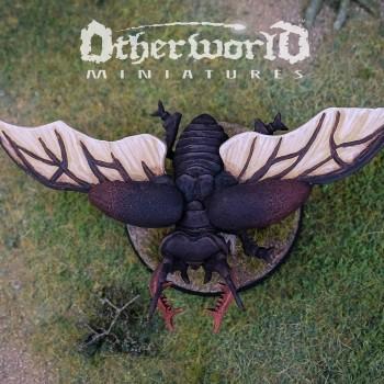 Beetle Wings Top